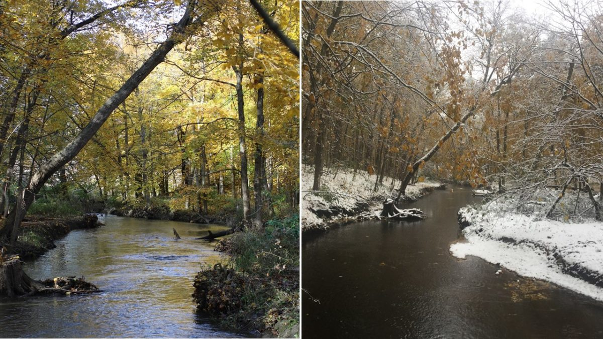 Pacing the transition to winter
